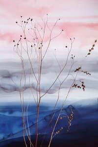 Dry_flower_ombre_still_life