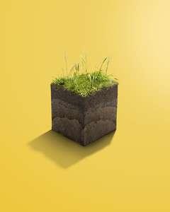 RFee_S&P_Soil_crop