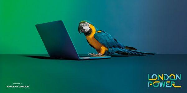 London-Power—Final-Ads—Laptop2